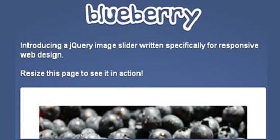 3. Blueberry