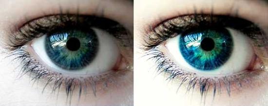 42. Bright eyes