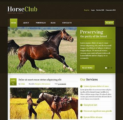 Horse Club WordPress Theme