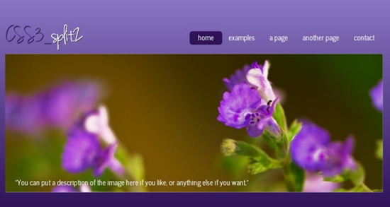 FreeHTML5CSS3Templates15