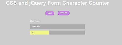 Form Character Limit Animation using jQuery and CSS