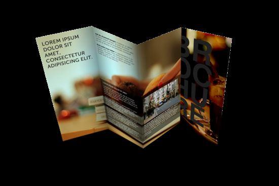 Brochure-Mock-ups-7