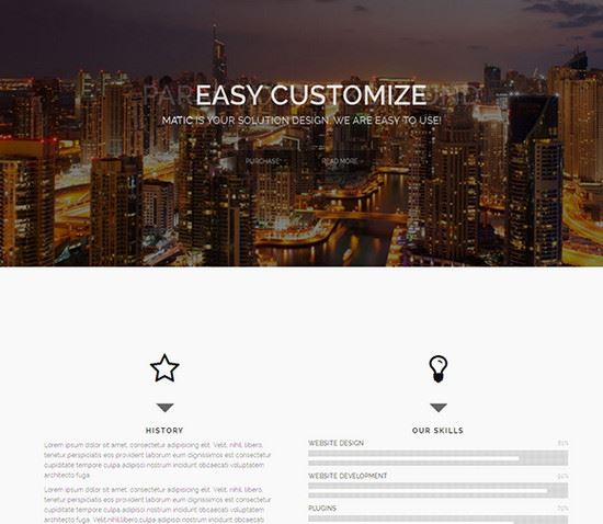 Free-HTML-CSS-Website-Templates-29