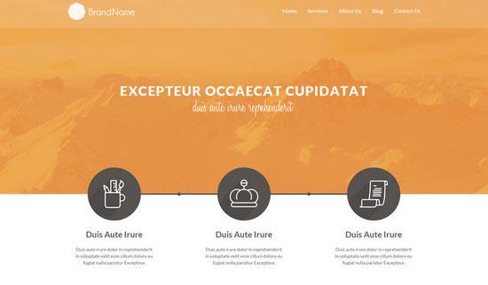 Free-HTML-CSS-Website-Templates-45