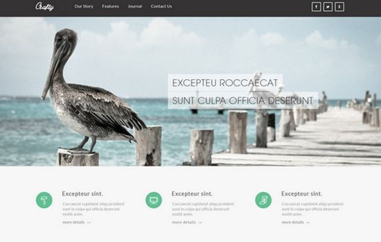 free html css website templates 49 - Responsive Website Templates Free Download Html With Css