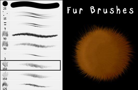 Fur-Photoshop-Brushes-10
