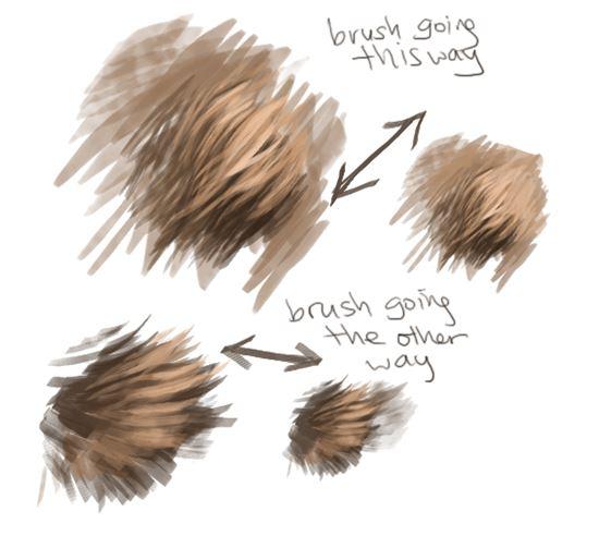 Fur-Photoshop-Brushes-14