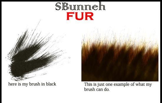 Fur-Photoshop-Brushes-19