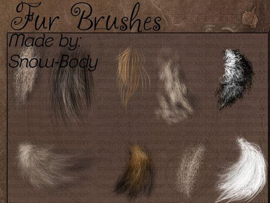 Fur-Photoshop-Brushes-2