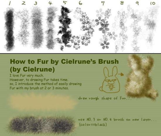 Fur-Photoshop-Brushes-25