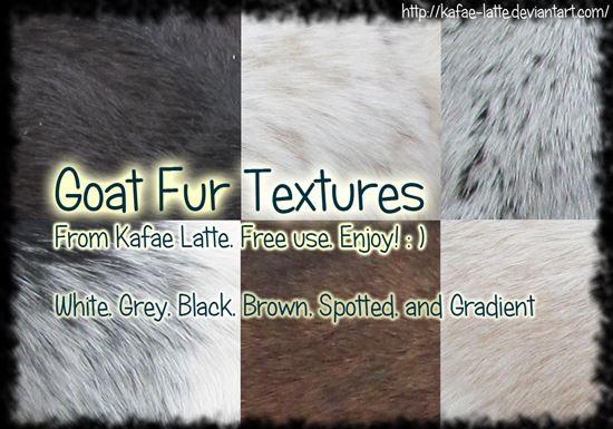 Fur-Photoshop-Brushes-29