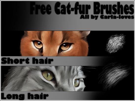 Fur-Photoshop-Brushes-32
