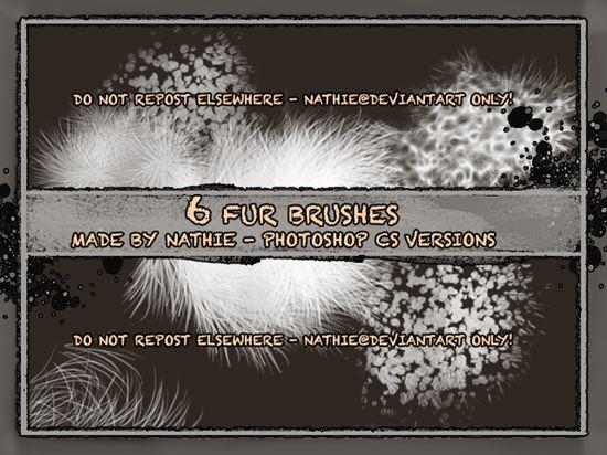Fur-Photoshop-Brushes-5