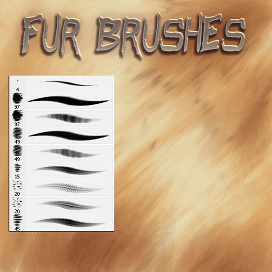Fur-Photoshop-Brushes-7