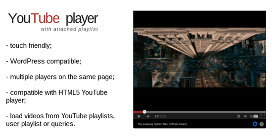 13) YouTube Player
