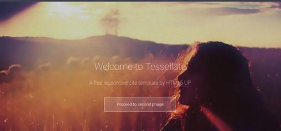 26) Tessellate