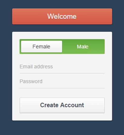 2) CSS3 Registration Form