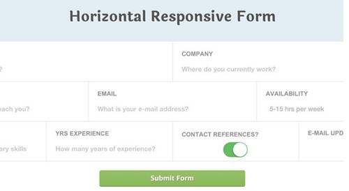 4) Responsive CSS3 Application Style Form Fields