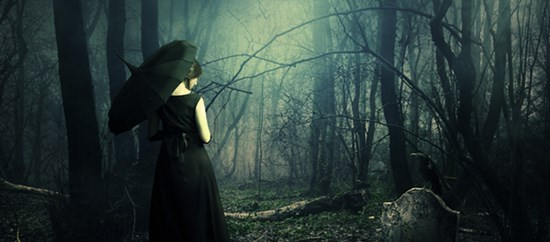 Manipulating a Dark and Mysterious Forest