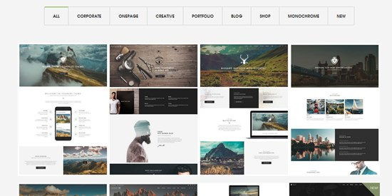 10) Ronne-by high performance WordPress theme
