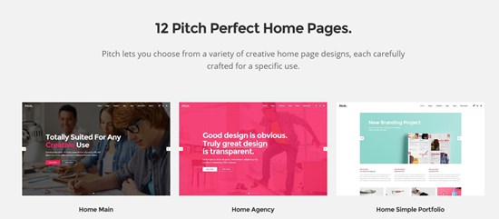 16) Pitch a theme for freelancers and agencies