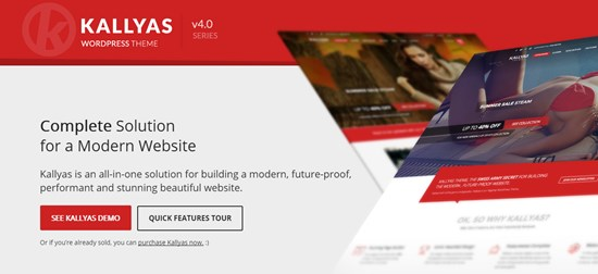19) KALLYAS Responsive multipurpose WordPress theme