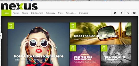 26) Nexus WordPress theme