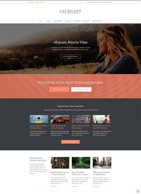 Lacegant-free-Website-Template