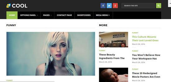 WordPress-Magazine-Blog-Themes-2016-18