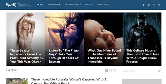 WordPress-Magazine-Blog-Themes-2016-19