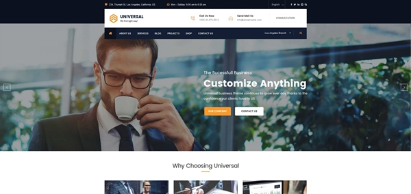 Business Consulting and Professional Services WordPress Theme